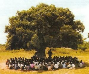 arbre-a-palabres-2